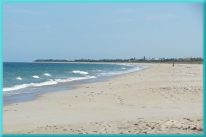 bch4-vero-beach-hotels-near-the-best-beaches-in-florida30